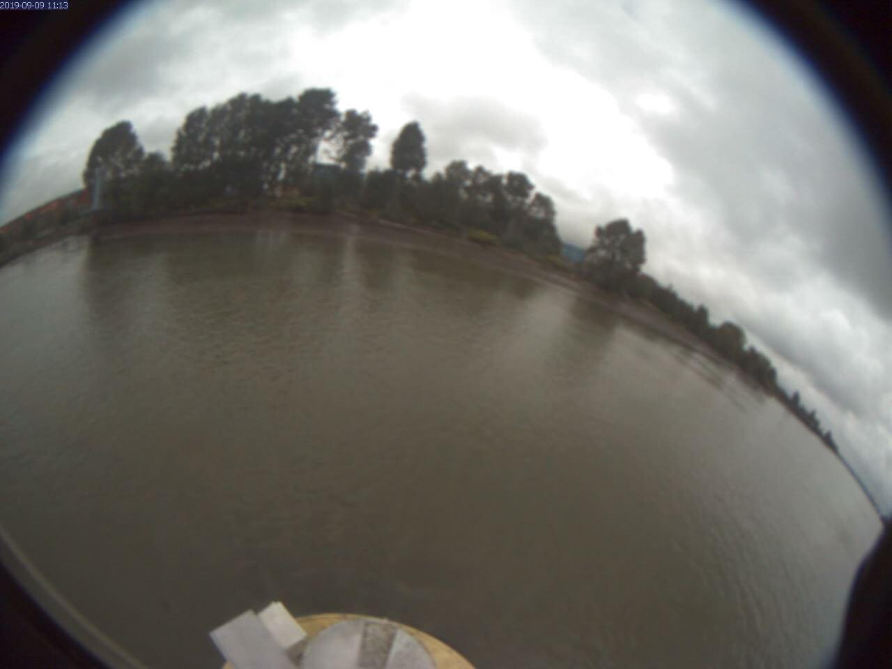 Live Buoy Camera Image
